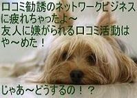 0e3d1231b869b22cadab19b98187015a-thumbnail2-crop-thumbnail2.jpg